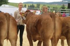 Briana 4. Platz Bundesschau Limousin