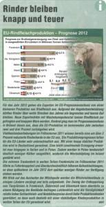 EU Rindfleischproduktion – Prognose für 2012