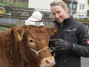 Impressionen vom Fleischrindertag in Alsfeld 2014